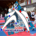 X International karate competitions  «GOMEL OPEN CUP 2018»