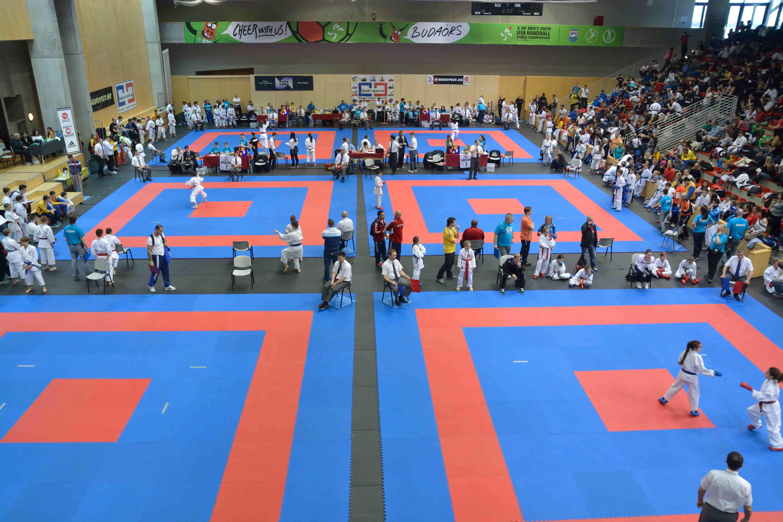 Image Gallery Karate Tatami